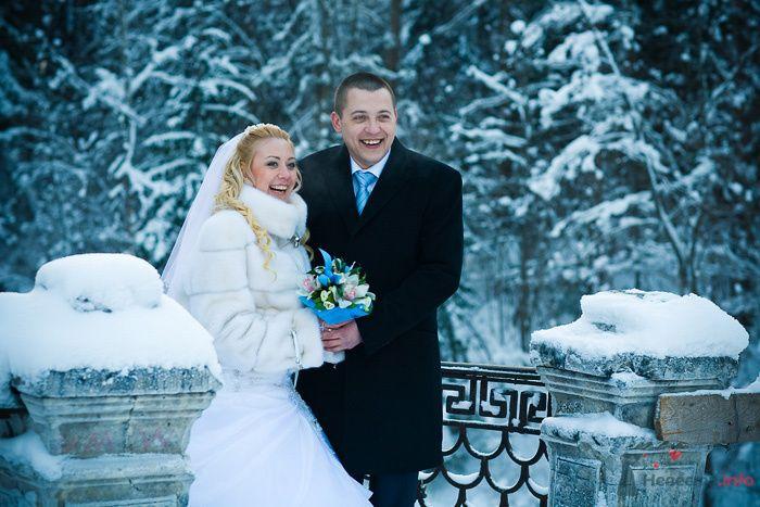 Фото 76206 Фотографы Никифоровы-Гордеевы Сергей и Константин