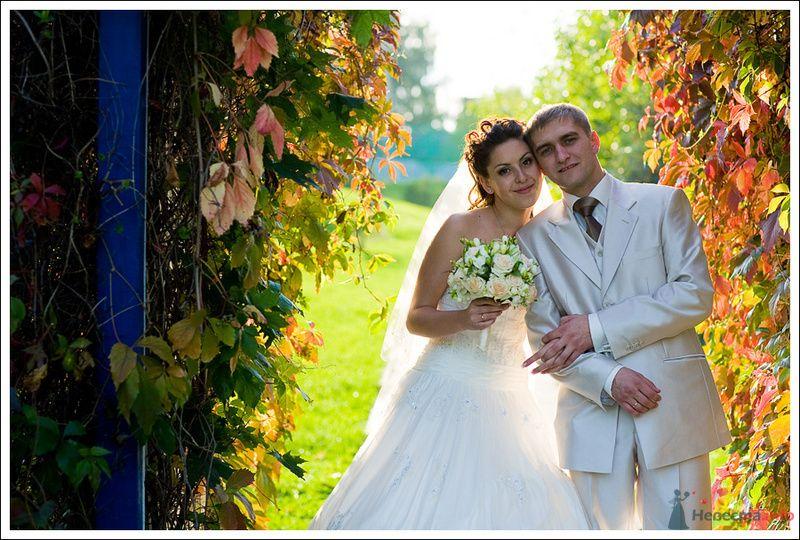 Фото 79341 в коллекции Мои фотографии - Фотографы Никифоровы-Гордеевы Сергей и Константин