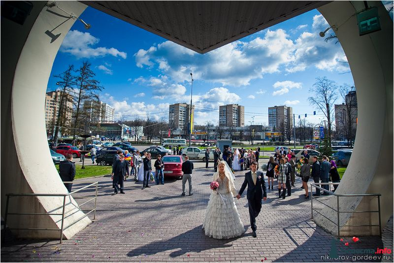 Фото 102705 в коллекции MIX - Фотографы Никифоровы-Гордеевы Сергей и Константин