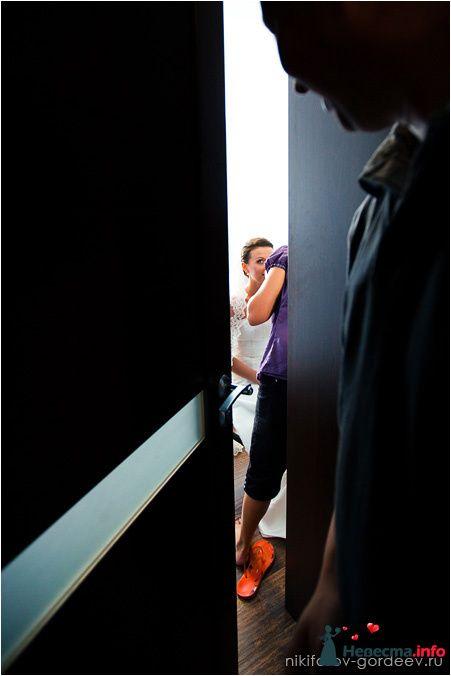 Фото 121733 в коллекции Жаркая радость. - Фотографы Никифоровы-Гордеевы Сергей и Константин
