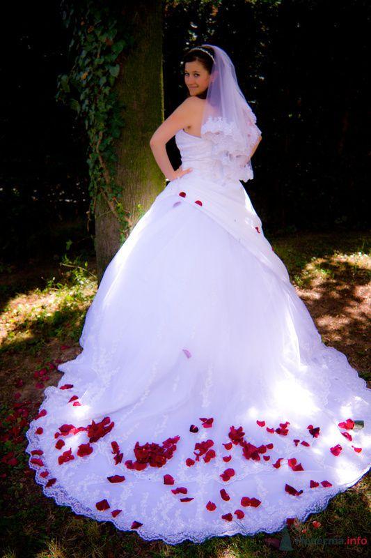 Фото 76527 в коллекции Мои фотографии - Maria Althaus - свадебный фотограф