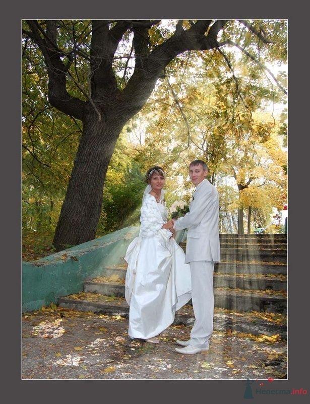 Фото 75940 в коллекции Свадьба в Пензе - Невеста01