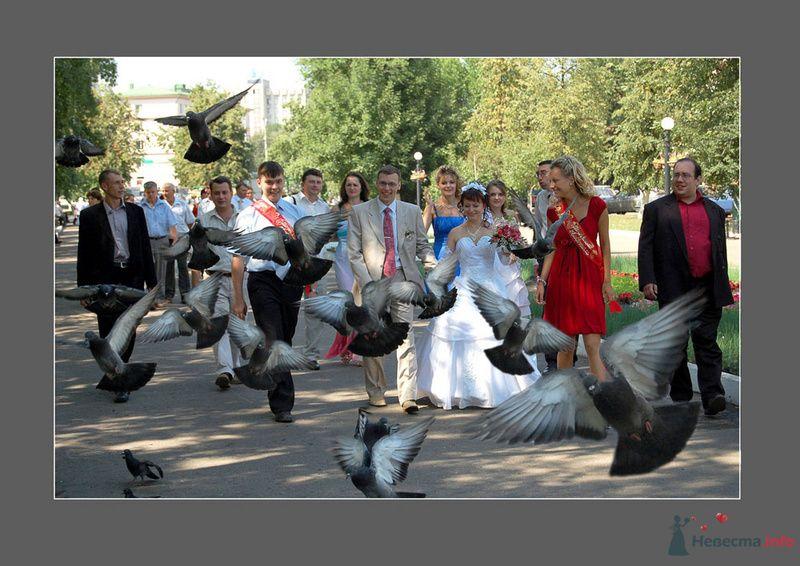 Фото 75970 в коллекции Свадьба в Пензе - Невеста01