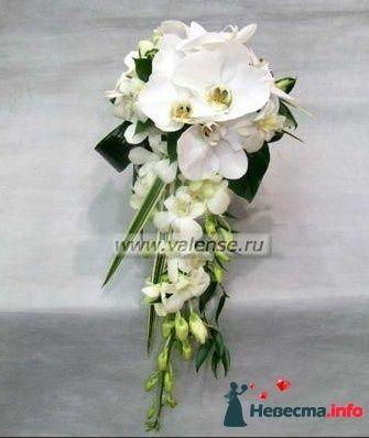 Фото 122897 в коллекции Мои фотографии - Невеста Eva