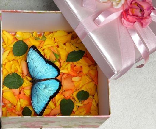 Коробка с бабочками в подарок