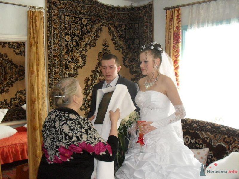 Фото 77869 в коллекции Моя свадьба. - dobirmanik