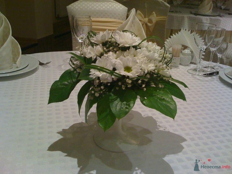Фото 54457 в коллекции Украшение банкетного зала цветами