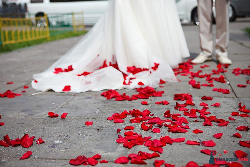 Фото 124090 в коллекции Мои фотографии - Невеста01