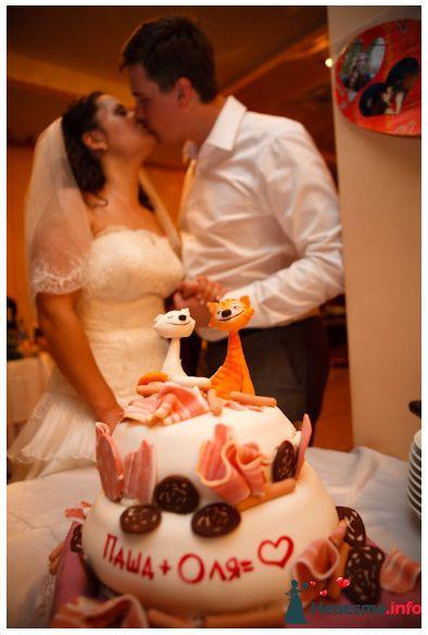 Фото 119012 в коллекции Свадьба - Oliti