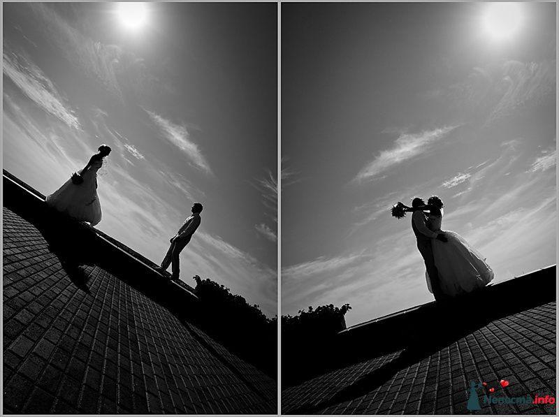 Фото 94773 в коллекции Мгновения счастья - Light Photo Studio - фотограф