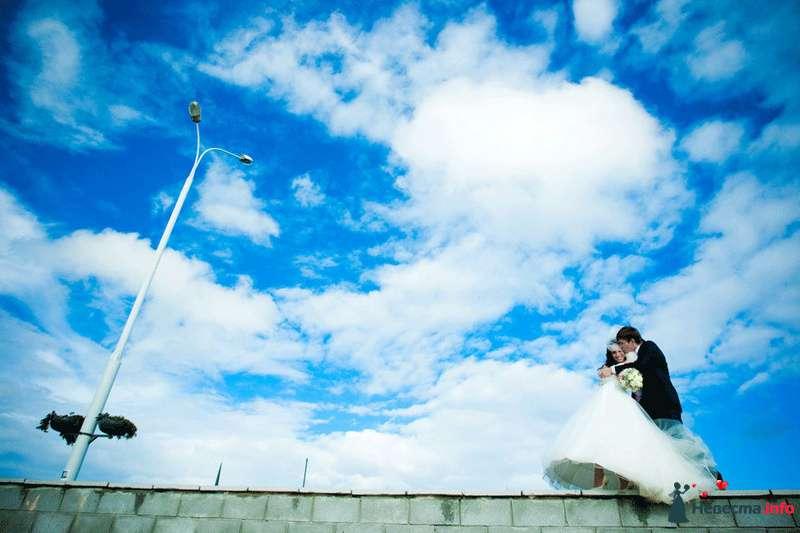 Фото 94780 в коллекции Мгновения счастья - Light Photo Studio - фотограф