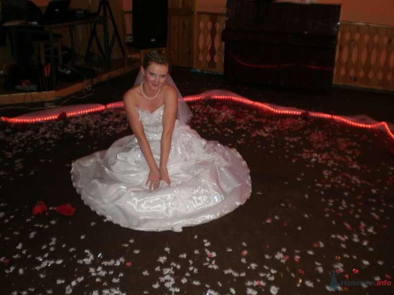 Фото 78981 в коллекции Свадебные моменты - Наталия Ведущая