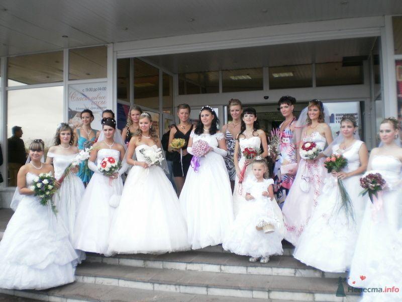 Фото 79042 в коллекции Свадебные моменты - Наталия Ведущая