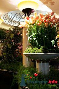 Фото 80749 в коллекции Образцы свадебных букетов - Цветочный Рай - флористы