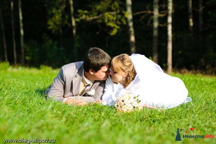Фото 80814 в коллекции Свадьба Белгород - immortal