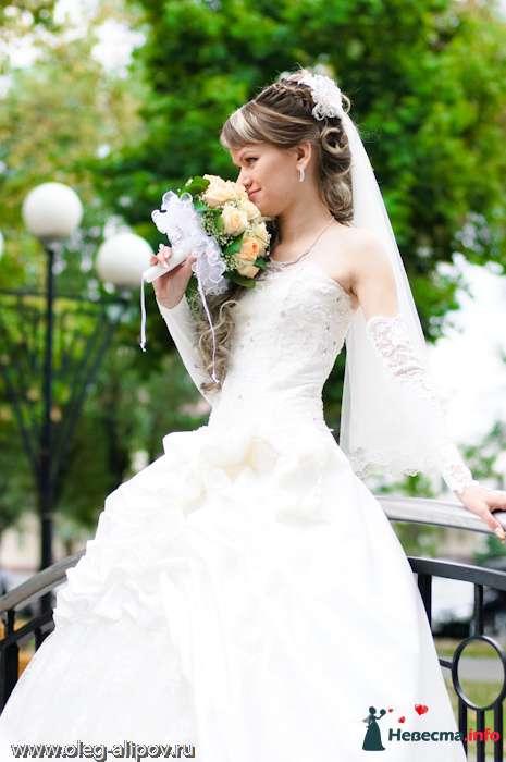 Фото 80817 в коллекции Свадьба Белгород - immortal