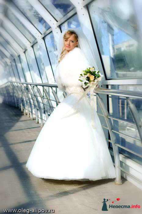 Фото 80819 в коллекции Свадьба Белгород - immortal