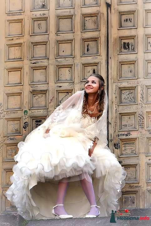 Фото 81293 в коллекции Свадебный день - Фотограф Сергей Таран