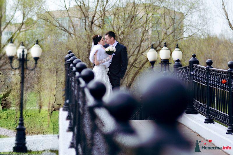 Жених и невеста стоят, прислонившись друг к другу, в парке на мосту - фото 104042 Фотограф Юлия Самохина