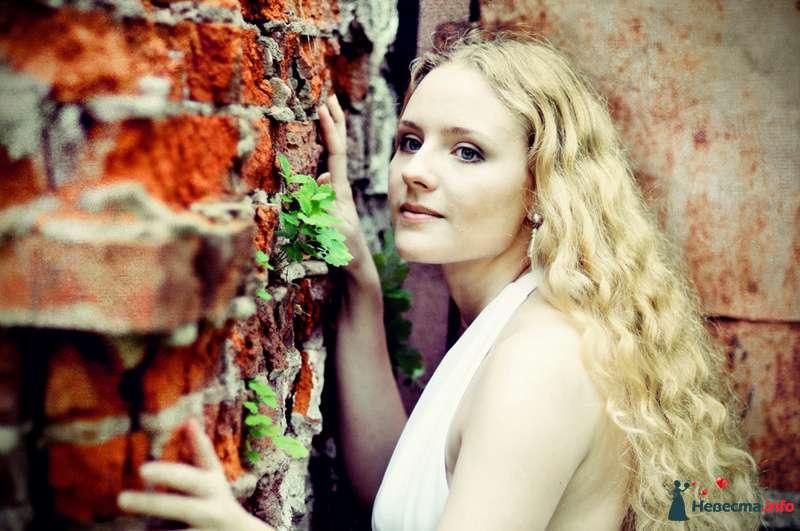 Фото 93005 в коллекции Мои фотографии - Фотограф Юлия Самохина