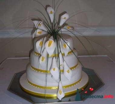 Фото 84784 в коллекции Торты - Свадебный распорядитель. Яна