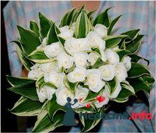 Фото 84847 в коллекции Букет Невесты - Свадебный распорядитель. Яна