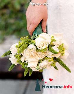 Фото 96601 в коллекции Букет Невесты - Свадебный распорядитель. Яна