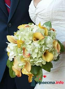 Фото 96621 в коллекции Букет Невесты - Свадебный распорядитель. Яна