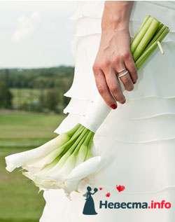 Фото 96632 в коллекции Букет Невесты - Свадебный распорядитель. Яна