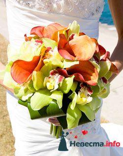 Фото 96652 в коллекции Букет Невесты - Свадебный распорядитель. Яна