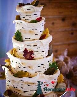Фото 96836 в коллекции Торты - Свадебный распорядитель. Яна