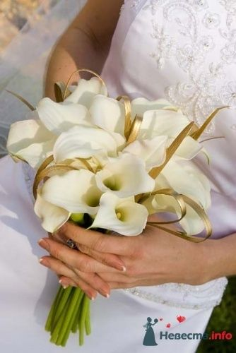 Фото 6346 в коллекции Мои фотографии - Невеста01