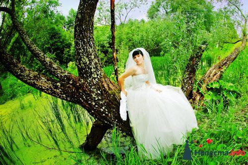 Фото 131779 в коллекции Свадебный день - Авторская студия фотографии и видеографии.