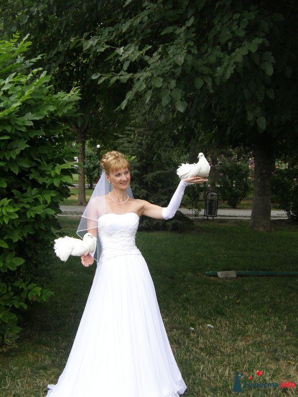 Вот такая Я невеста - фото 126041 масичка