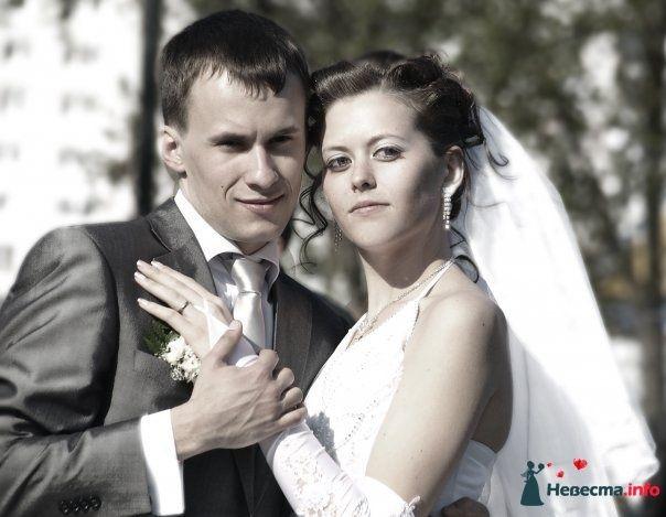 Фото 83008 в коллекции Свадебные фотографии от aallaa