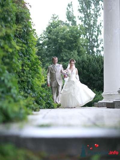 Фото 85540 в коллекции Мои фотографии - Видео студия La Fete - свадебные фото