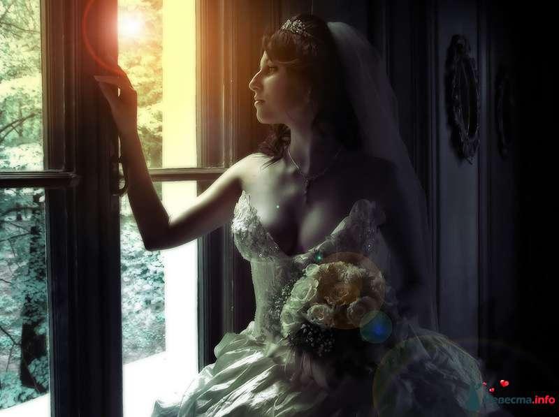 Фото 83560 в коллекции WeddingPhoto - Невеста01