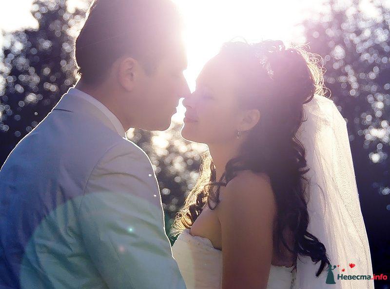 Фото 83561 в коллекции WeddingPhoto - Невеста01