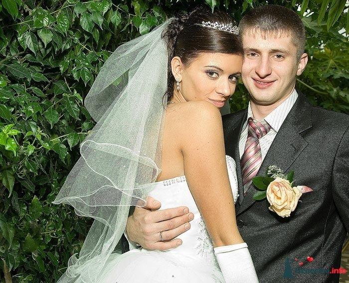 Фото 83547 в коллекции Свадебная фотосъёмка - Елена Леонидовна