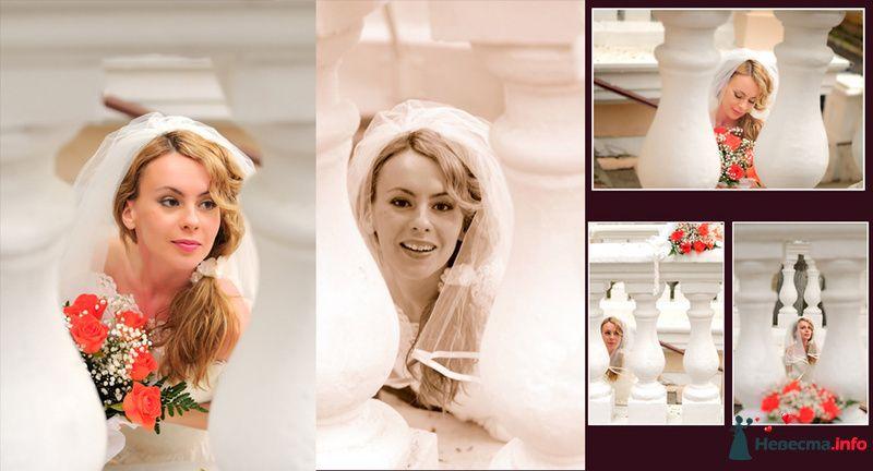 Фото 105902 в коллекции Свадьба - Фотограф Хасан Йенер