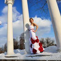 Фотосессия, платье, зима
