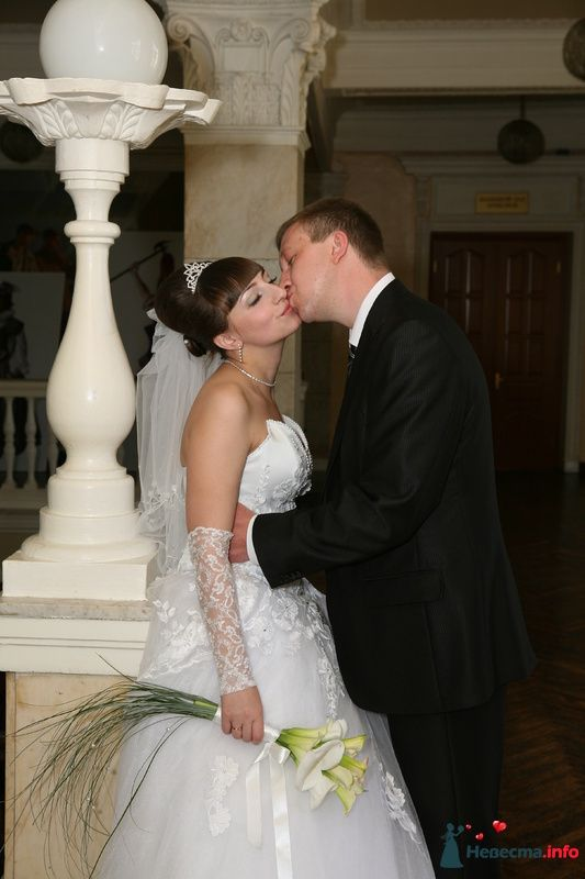 Фото 118267 в коллекции Свадьба