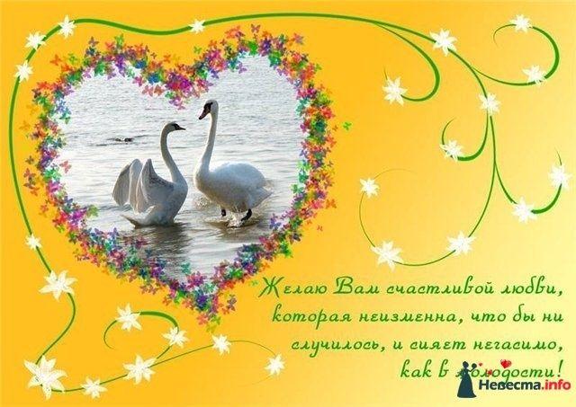 Фото 123431 в коллекции Мои фотографии - Настёнкин