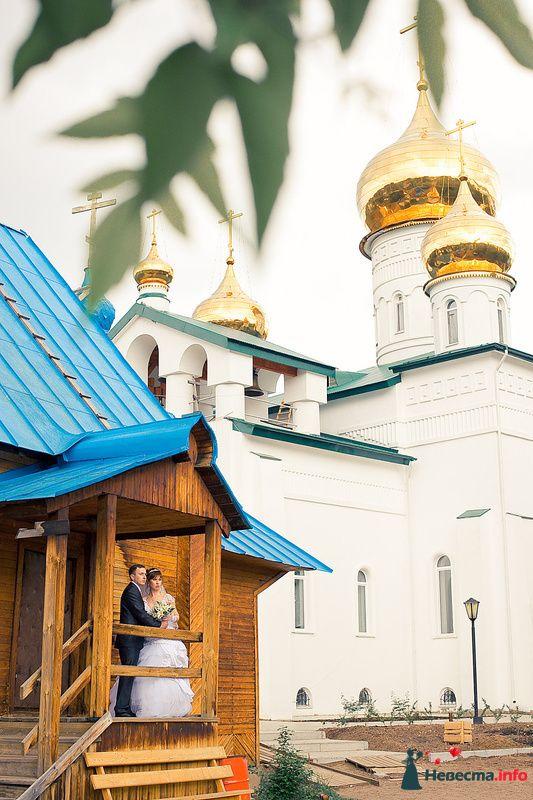 Фото 117771 в коллекции Лето 2о1о - Фотограф Сергей Королёв