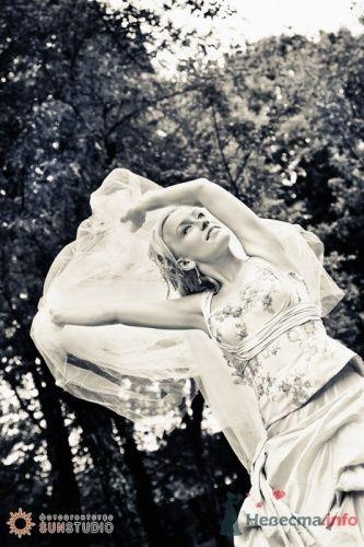 Фото 15590 в коллекции Юля и Дима. 13 сентября 2008 года. Фотограф Анна Горбушина - Анна Горбушина - фотоагентство SunStudio