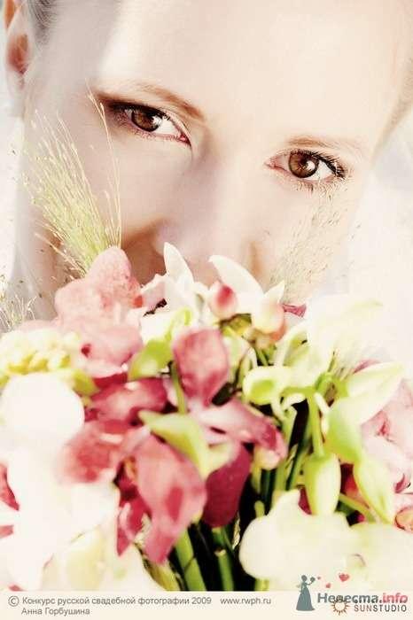 Фото 25501 в коллекции Финал Конкурса русской свадебной фотографии 2009. Фотоотчёт - Анна Горбушина - фотоагентство SunStudio