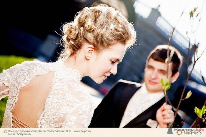 Фото 25503 в коллекции Финал Конкурса русской свадебной фотографии 2009. Фотоотчёт
