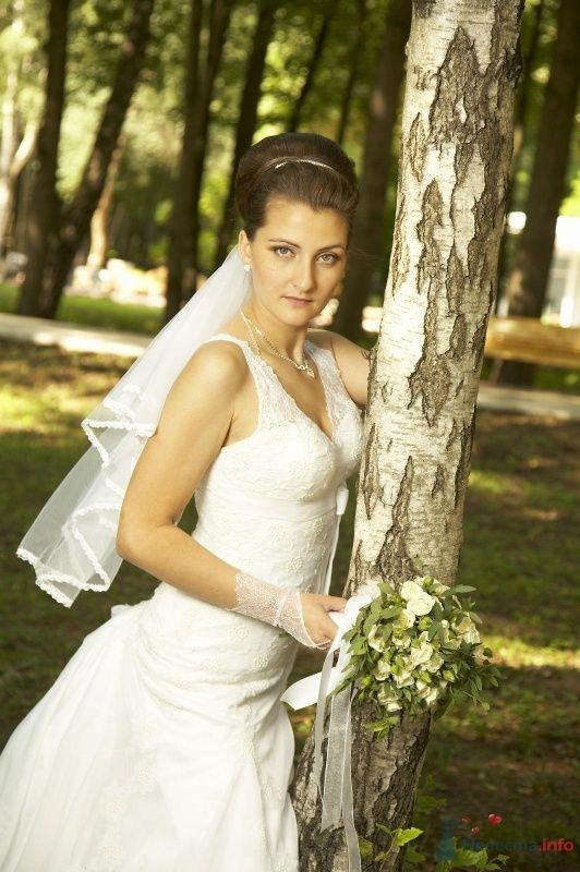 Фото 58909 в коллекции Мои фотографии - Elenka