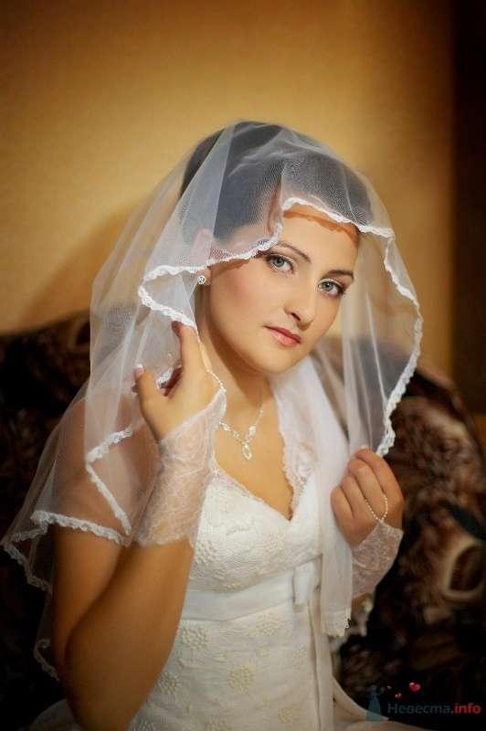 Фото 58938 в коллекции Мои фотографии - Elenka