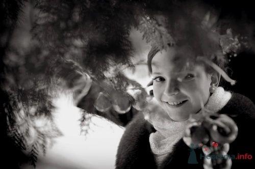 Фото 5722 в коллекции Зимняя свадьба. Иван-да-Марья - Фотограф Руслан Сафин